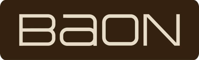 автоматизация магазина одежды «Baon» с помощью 1С Розница 8. Магазин одежды.img